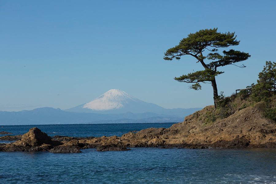 広々とした富士山が見える側のテラスでは、ヨガ教室を開くこともあるそう。