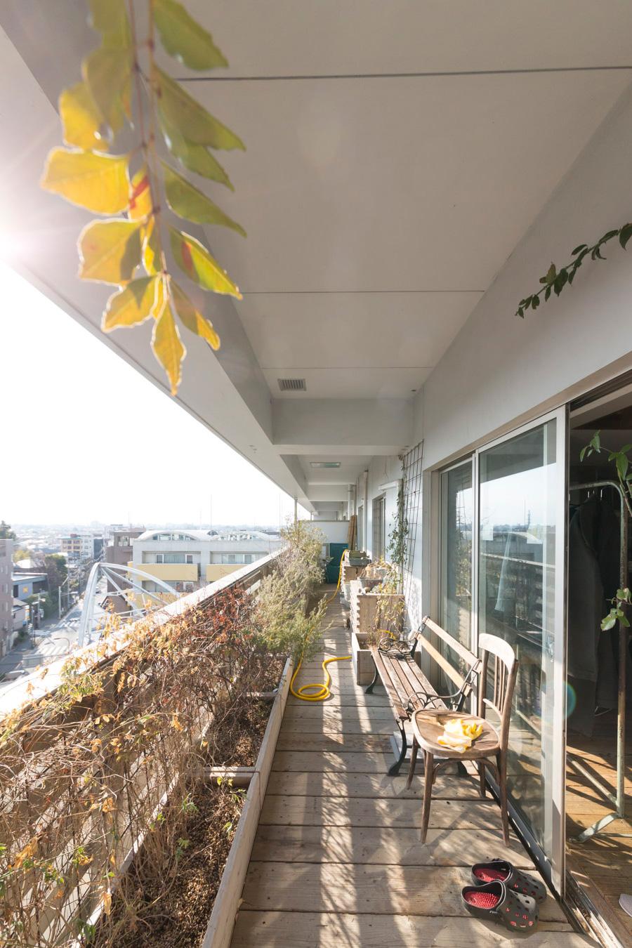 ベランダにはプランターがズラリと並んでいる。夏はジャングルのように葉が繁り、グリーンの空間になるのだとか。