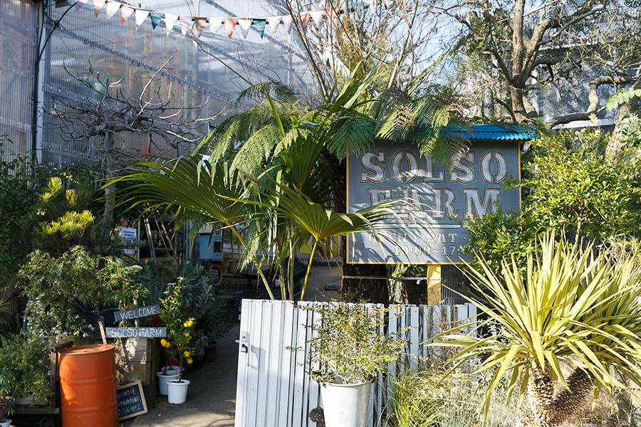 もともとオフィス兼農園だった場所を週末限定のショップに。ブランコやカフェスペースが配され、植物との暮らしを体験できる空間になっている。