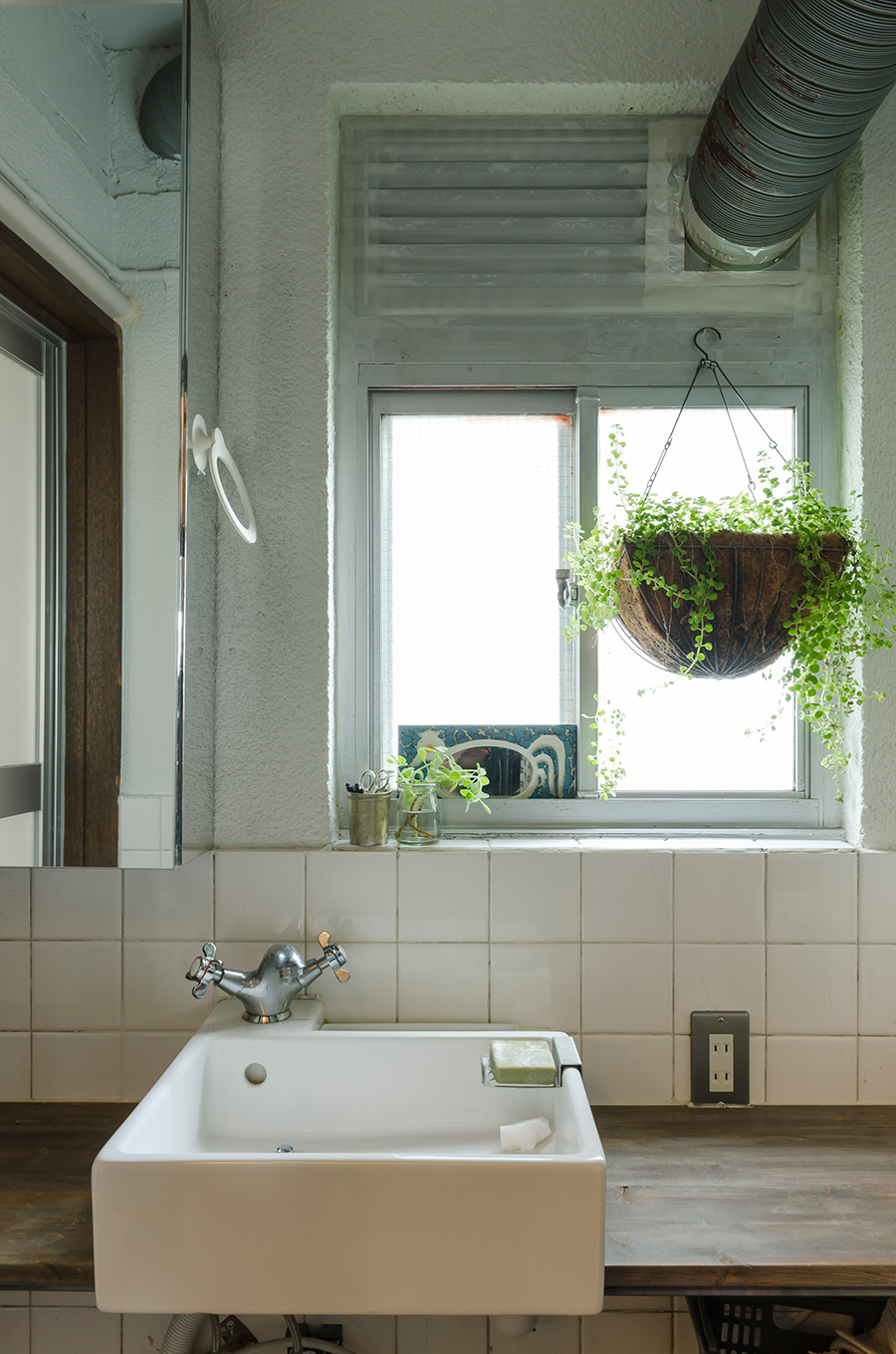 水回りはすべてリフォーム。白いタイルと木の天板に、ハンギングのグリーンが素朴な雰囲気。