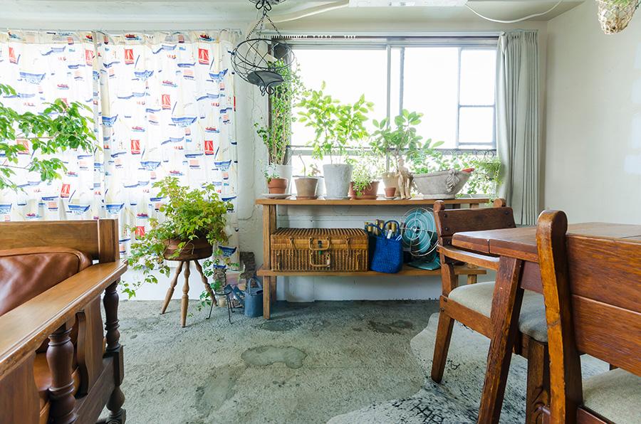 テラス側の床はコンクリート剥き出しの状態に。サンルームのように明るい。