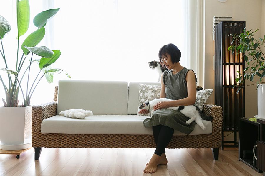 リビングのソファで猫たちとくつろぐ陽子さん。a.flatで購入したソファは、天然のヒヤシンスを丁寧に編み込んだもの。