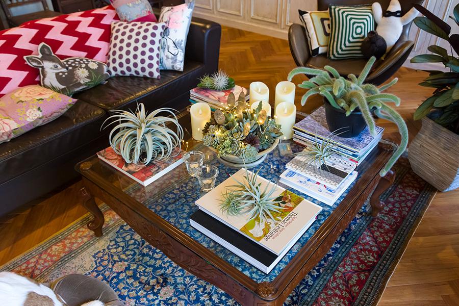 多肉植物やエアプランツ、お気に入りの写真集を使ったテーブルコーディネイト。ソファの上のクッションも素敵。