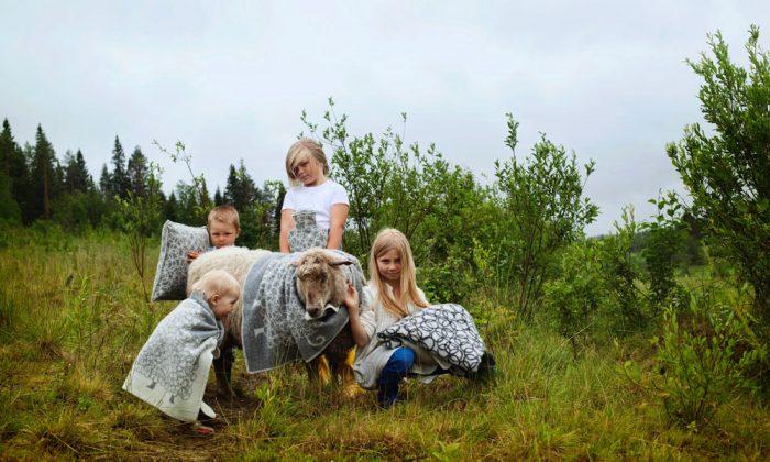 ラプアン カンクリのウールブランケットフィンランド生まれの楽しいブランケットで冬支度