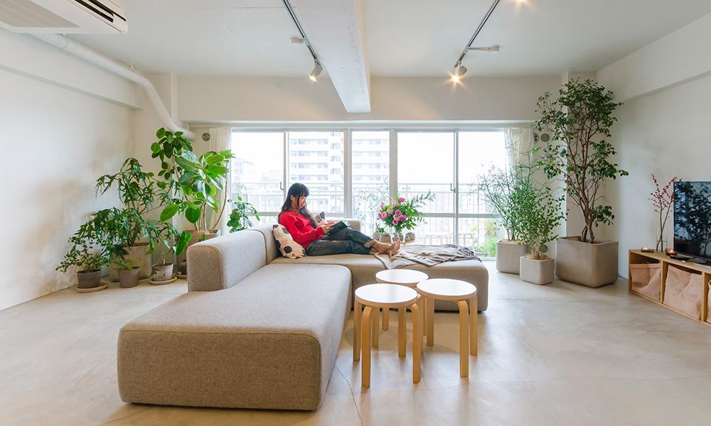 70平米ワンルーム 画廊のような空間に好きなグリーンを飾って