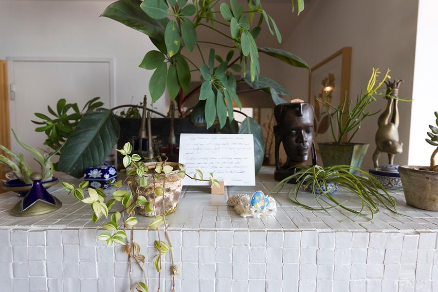 旅の思い出の品と共にたくさんの種類の植物が飾られている。1時間かけて丁寧に水やりをしているそう。