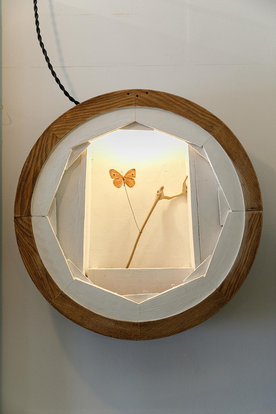 物語を感じることのできる奥行きのある壁かけのオブジェは、蝶を照らすライトがさらにドラマチックに。