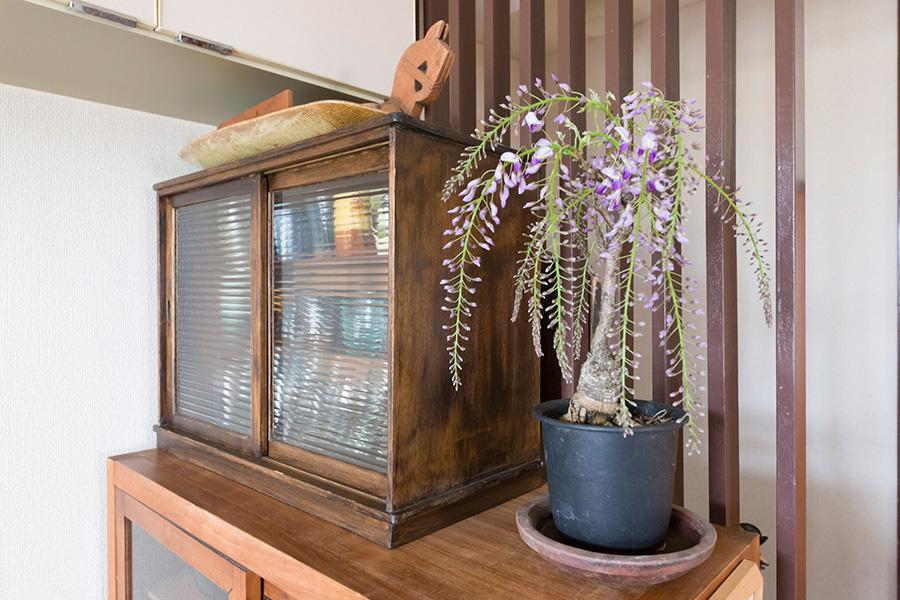 山藤の隣には、昔懐かしい雰囲気の食器棚。