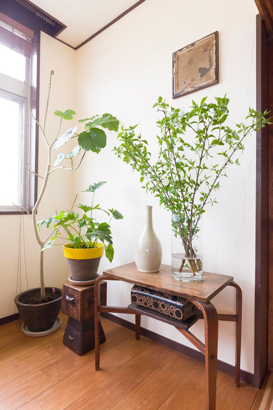 プリミティブな力強い家具や、繊細な細工を施した木箱、歴史を感じさせる焼き物など、石原さんのセンスで集められたものたち。
