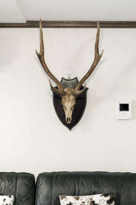 古美術店「温故知新」で買った鹿の壁掛け。 http://skipskipskip.co.jp/