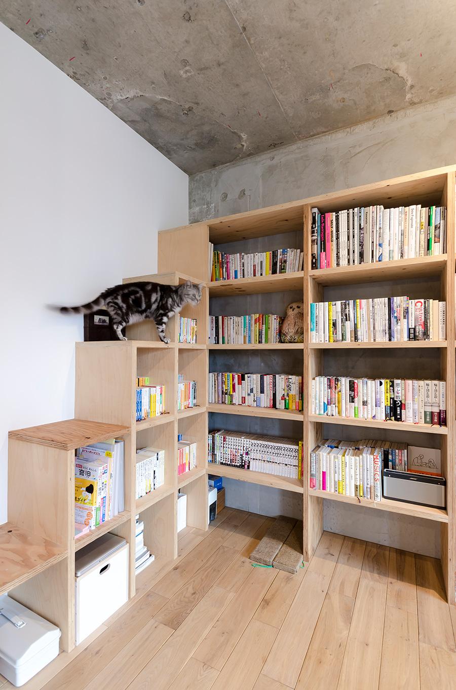 段差のある本棚はキャットウォークの役割も兼ねる。