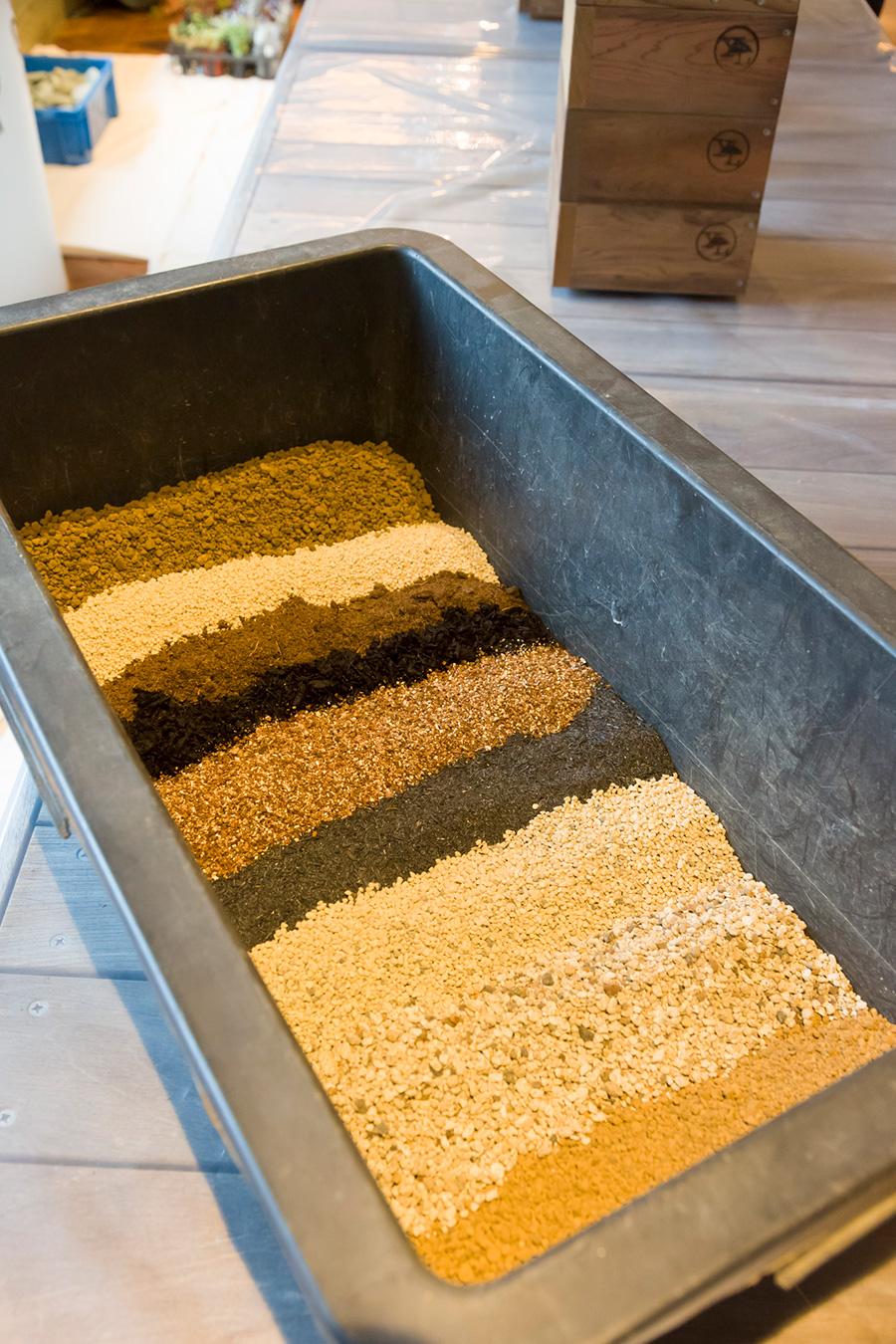 多肉植物に最適な土の配合。奥から、赤玉土、鹿沼土(土を酸性に保ち排水性もいい)、ピートモス(水持ちがいい)、バーク堆肥、バーミキュライト(排水性がいい)、燻炭(PHの調整)、日向土(排水性を高める)、軽石(空気と水分を保つ)。