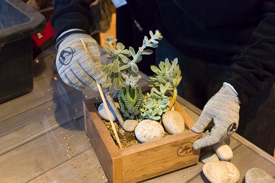 割り箸などを使い、ウッドプランターの隅々まで隙間なく用土を入れる。土と根の間にも隙間ができないようにする。