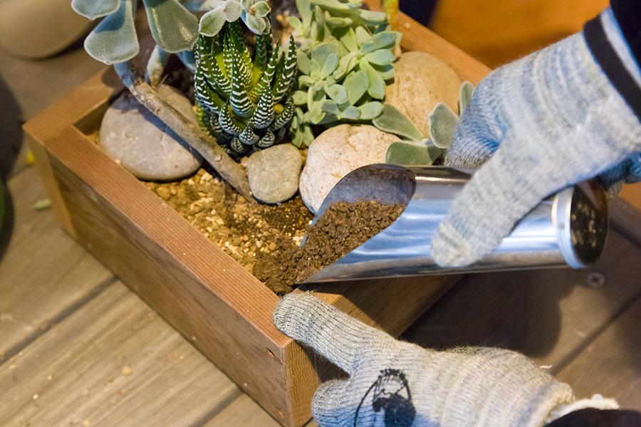用土を礫や小石などで覆って完成。