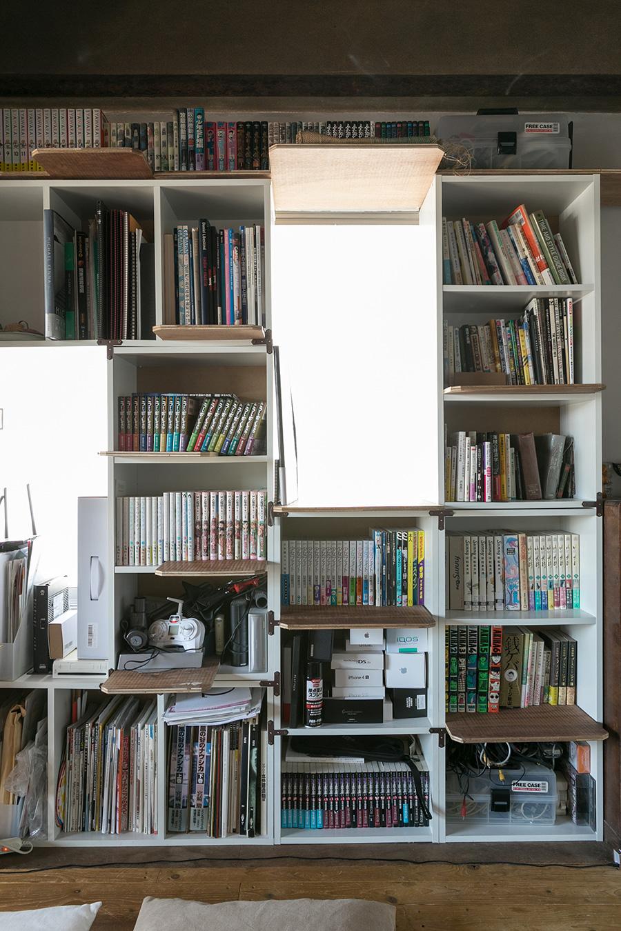 壁面の本棚に合板をプラスして、猫が運動できるようにした。