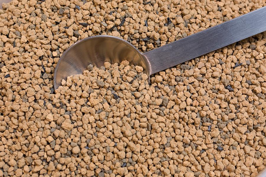 テラリウム用の土は、焼成赤玉土、富士砂、抗菌効果のある炭を混ぜたものを使う。