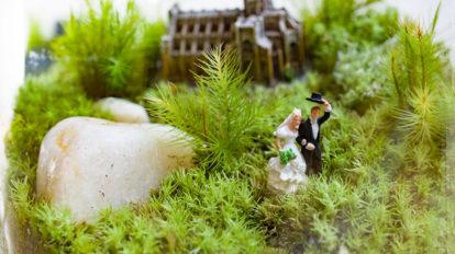 苔のテラリウムを作る -2  苔を寄せ植えして ボトルの中に物語を作る