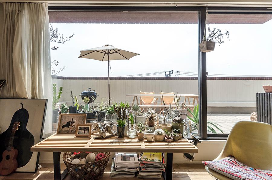 窓の内外に並ぶいろいろな植物。陶器の鉢はすべて奥さまの作品。