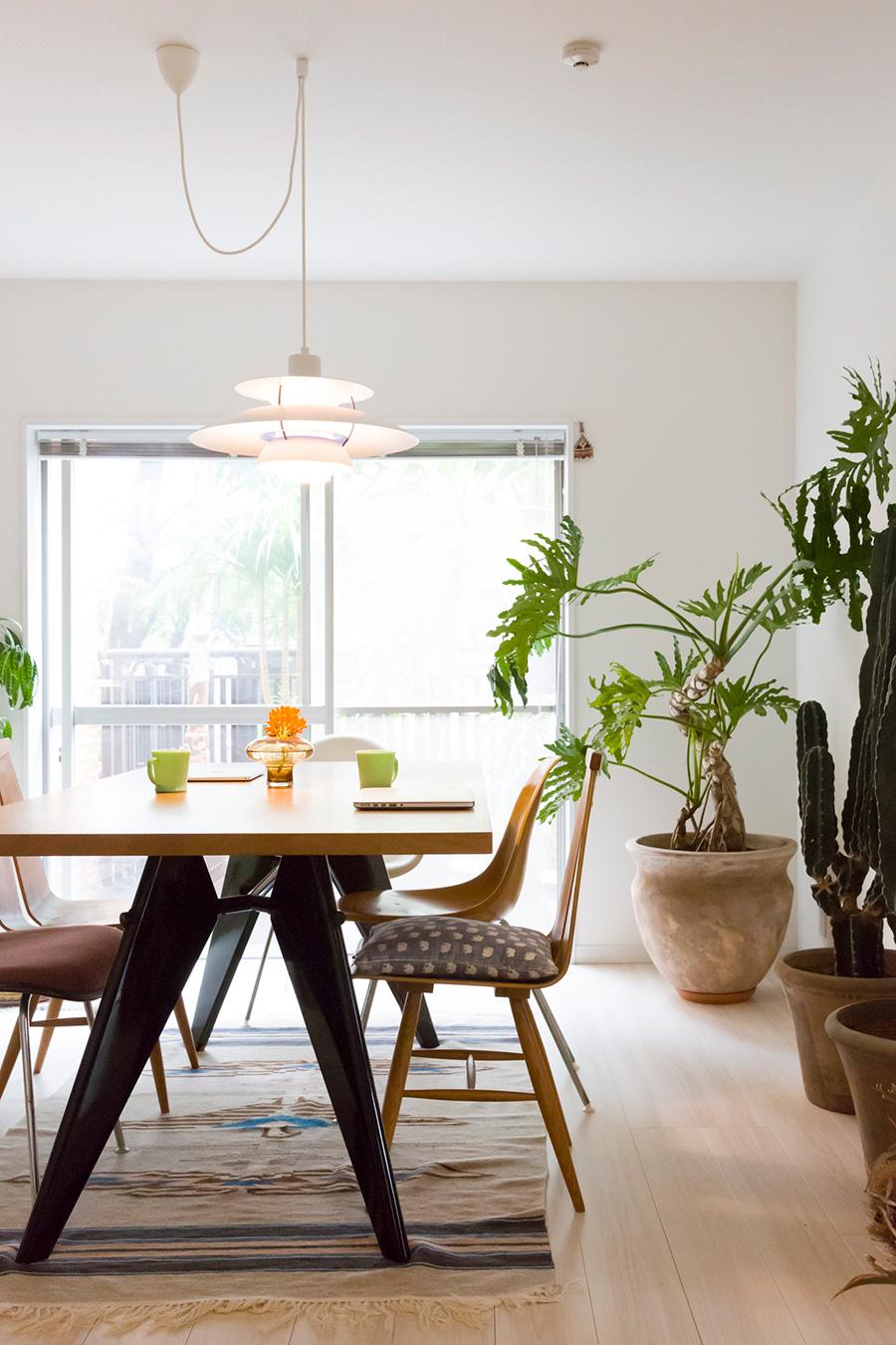 ダイニングテーブルはジャン・プルーヴェのEMテーブル。ミッドセンチュリーの家具に、存在感のあるセロームと柱サボテンがよく似合う。