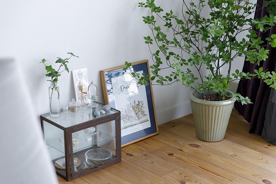 ソファとテーブルのほかにある家具といえば、お気に入りのものや思い出を飾る小さなショーケースぐらいと、かなり絞られている。