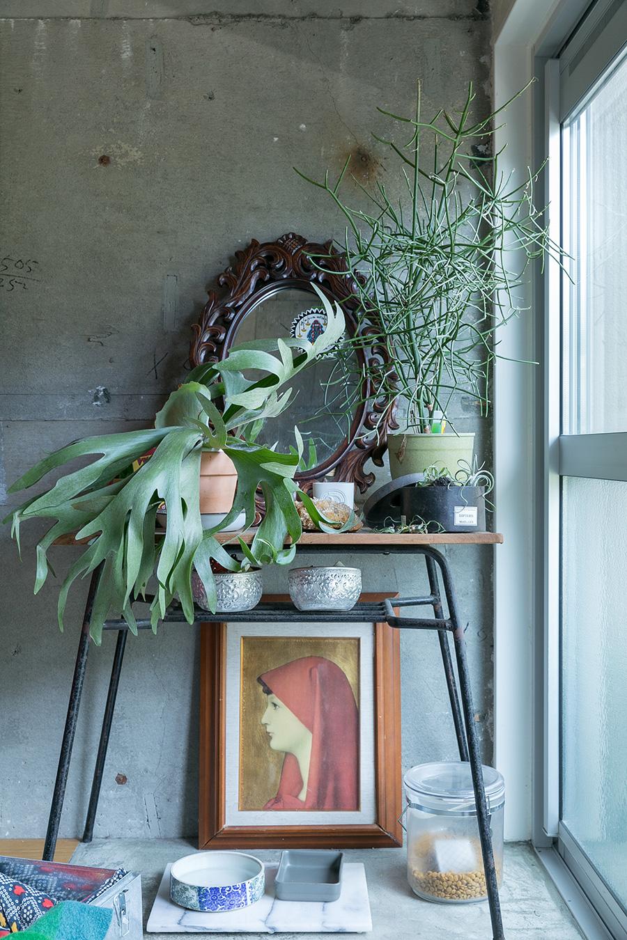 アートにたっぷりグリーンを組み合わせるのが高木さん流。下の大理石のテーブルはダイズちゃんの食卓。