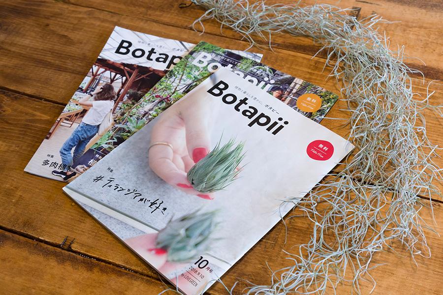 奥さまが編集に携わっている、植物と暮らしをテーマにしたフリーペーパー「Botapi」。