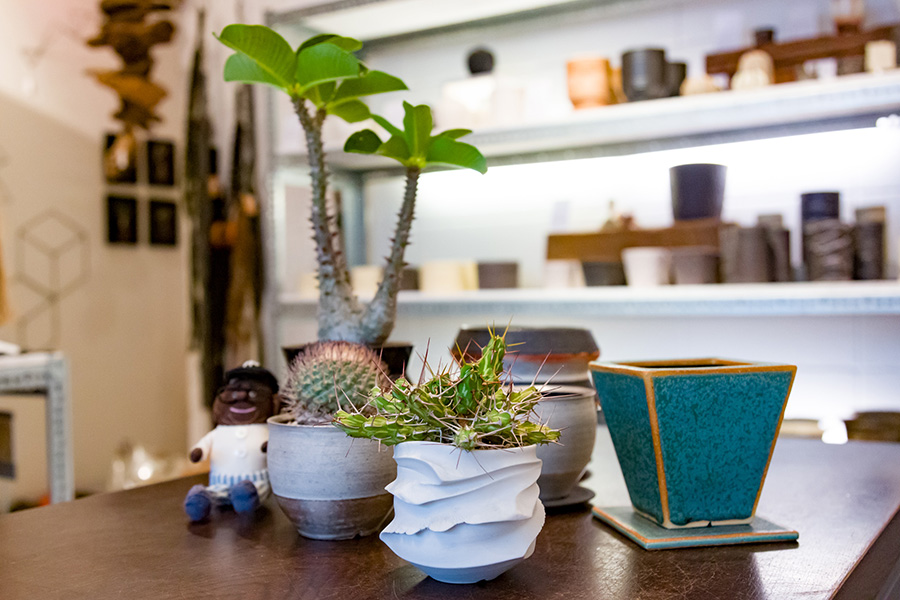 『TOKY』では、陶芸家とコラボレーションしたオリジナルの鉢を数多く揃えている。鉢に植物を植えたものも販売している。左端で鉢を見守っているのが『TOKY』のアイドルかつ多肉植物会のスーパースター、多肉六三郎さん。