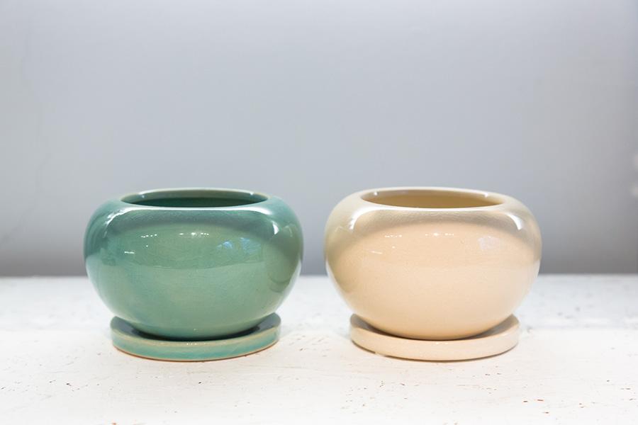 『TOKY』の目利きで、リーズナブルな量産品の鉢も数多く揃えられている。ポッテリとした可愛らしいフォルムと、ツヤツヤとした美肌を持つ鉢。