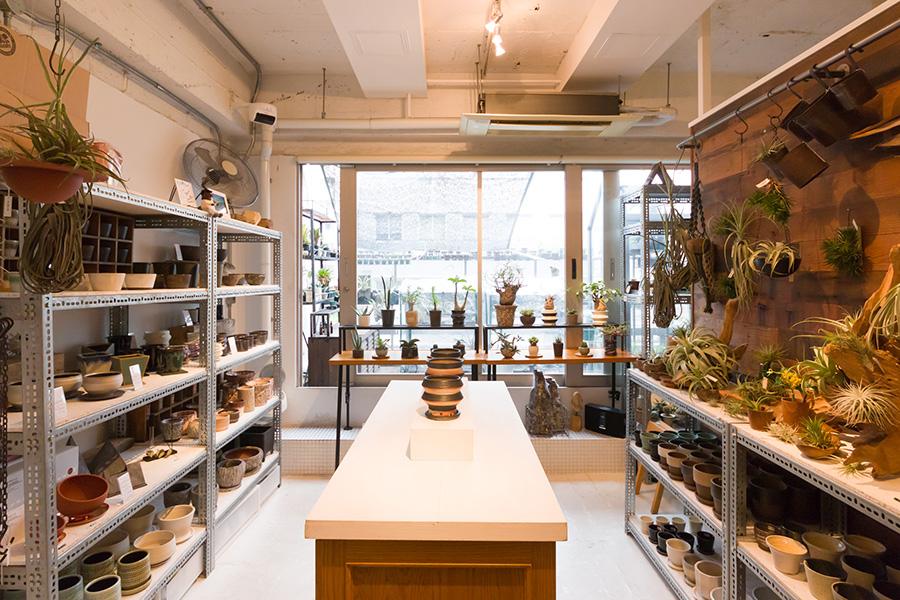 多肉植物や鉢の他に、状態のいいエアプランツ、Tシャツやバッグ、コーデックスのキャラクターグッズも。