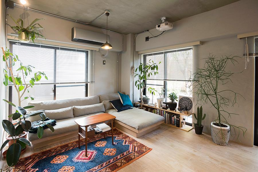 2面採光の明るいリビングではグリーンもよく育つ。空間にぴったり収まったソファーは、スローハウスで購入したもの。