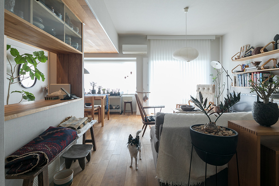 間取りはほとんど変えずに、相田さんらしい部屋にリノベーション。愛犬のツナちゃんが我々をお出迎えしてくれた。