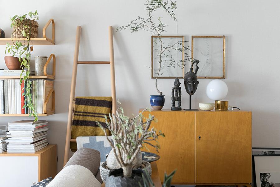 ガラス作家の大成哲さんの作品を壁に。棚の上の植物はマダガスカル原産のオペルカリア。