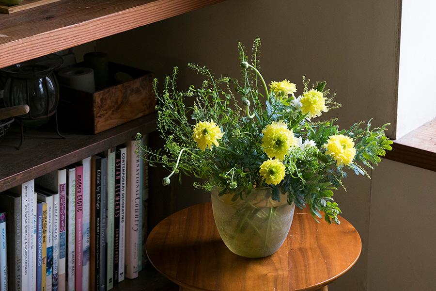 春先の球根花、ラナンキュラス、オオニソガラムに、アカシア、ナズナを。クールなガラスの器に活けて、春の清々しさを表現。