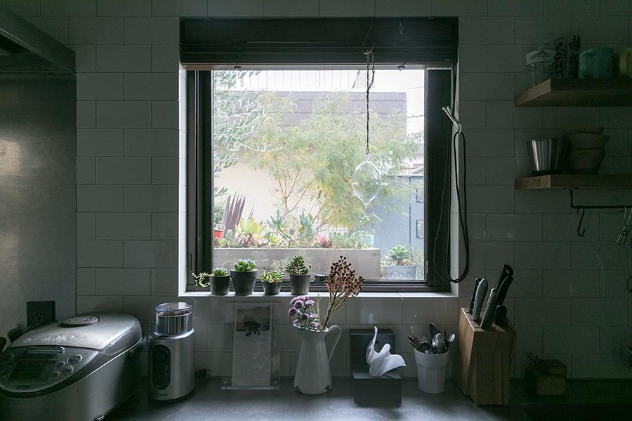 窓の外の木箱に多肉植物の寄せ植えを。内側には鉢に植えた多肉植物。ピッチャーにお花を挿して緑のある窓辺に。