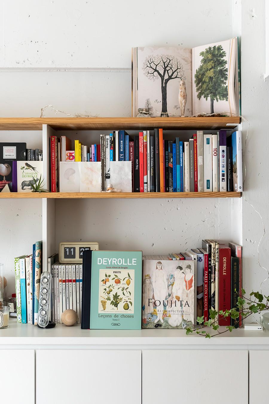 本棚にはフランスや日本の画集、図鑑が並ぶ。