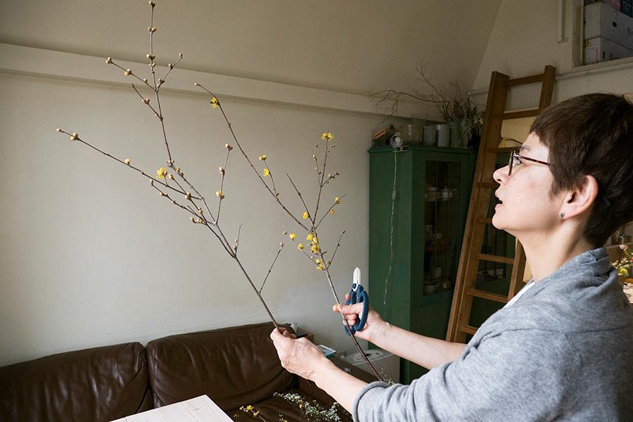 ③ロウバイは枝を見てどこを使うか考えるのがポイント。蕾や枝ぶりなど、いちばん使いたいメインのところを切り分けてとっておく。