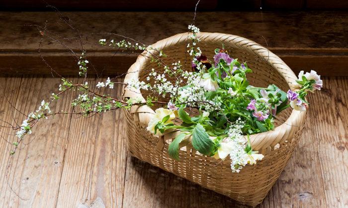 今年の暮らしに寄り添う草花 Part2冬に活躍する枝もの&常緑で素朴な華やぎを添える