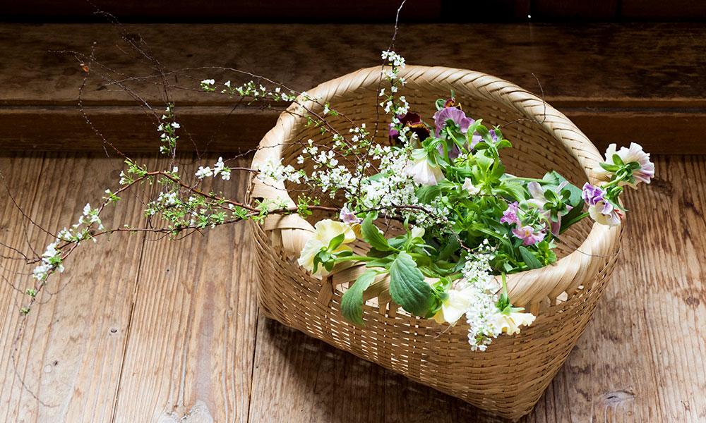 暮らしに寄り添う草花 Part2  冬に活躍する枝もの&常緑で 素朴な華やぎを添える