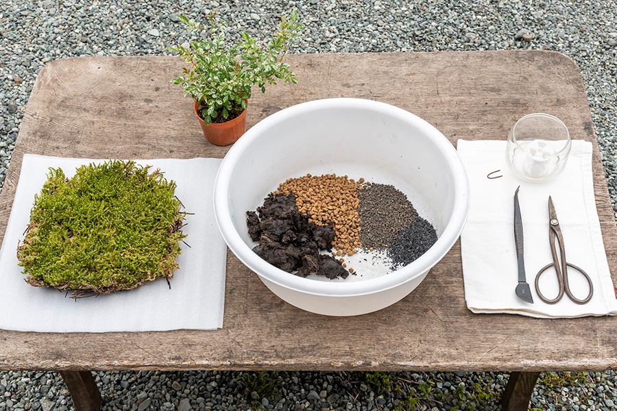 土と元肥のマグァンプ、植物の苗、ハイゴケにハサミ、ナイロン糸、ピンを用意。