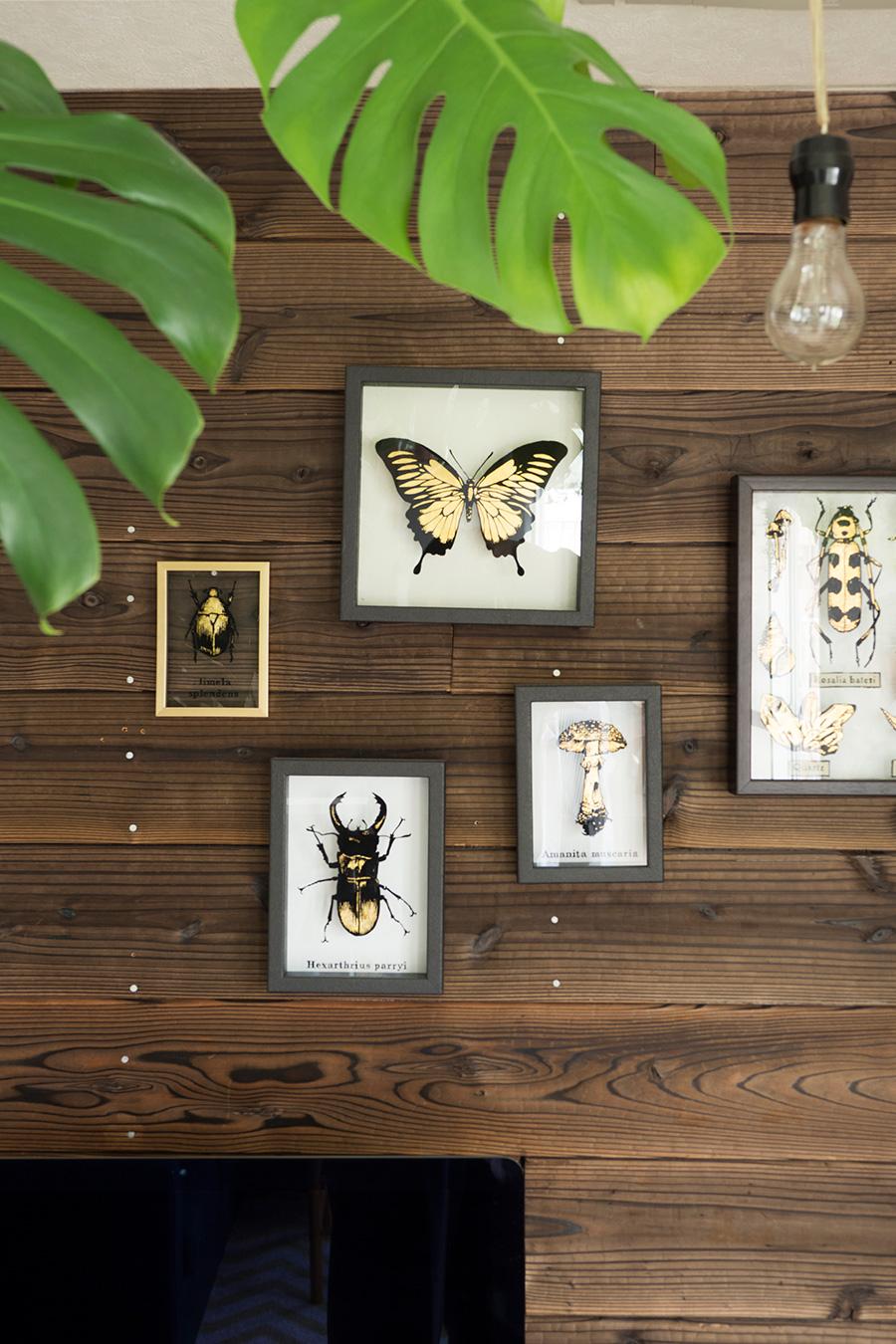 金箔とOne shotペイントでつくった昆虫標本を飾る。金属っぽい雰囲気と木材の組み合わせがマッチ。