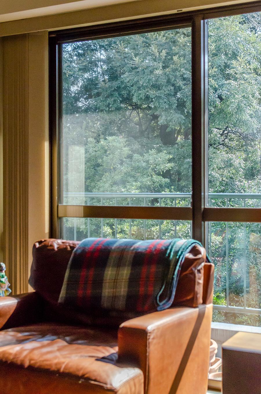 南向きの窓の外には新緑の森が広がる。