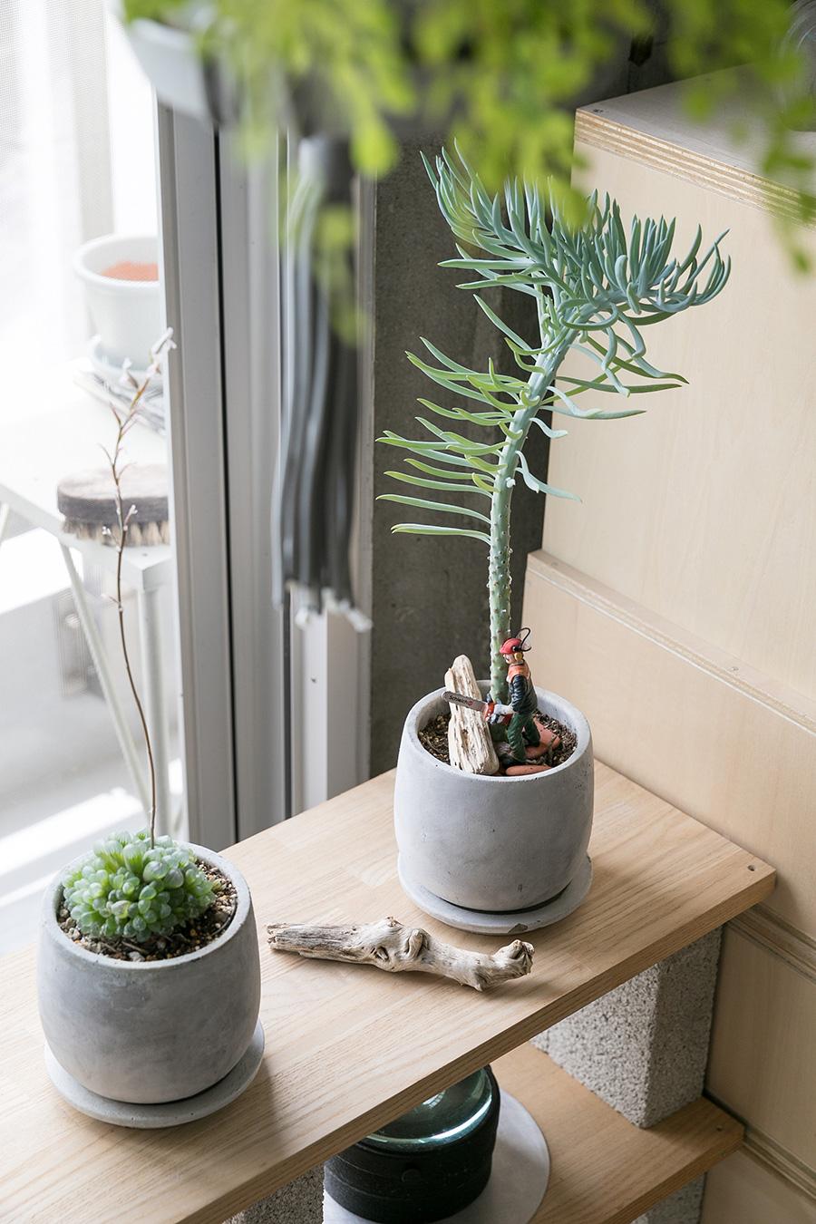 植物の足元にチェーンソーを持ったフィギュアを飾って。