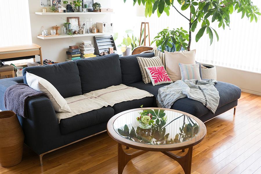 リビングの中央には家族3人でもたっぷり座れるソファーを置いた。「レイアウトは色々と変えていますが、この配置がいちばん暮らしやすいですね」。