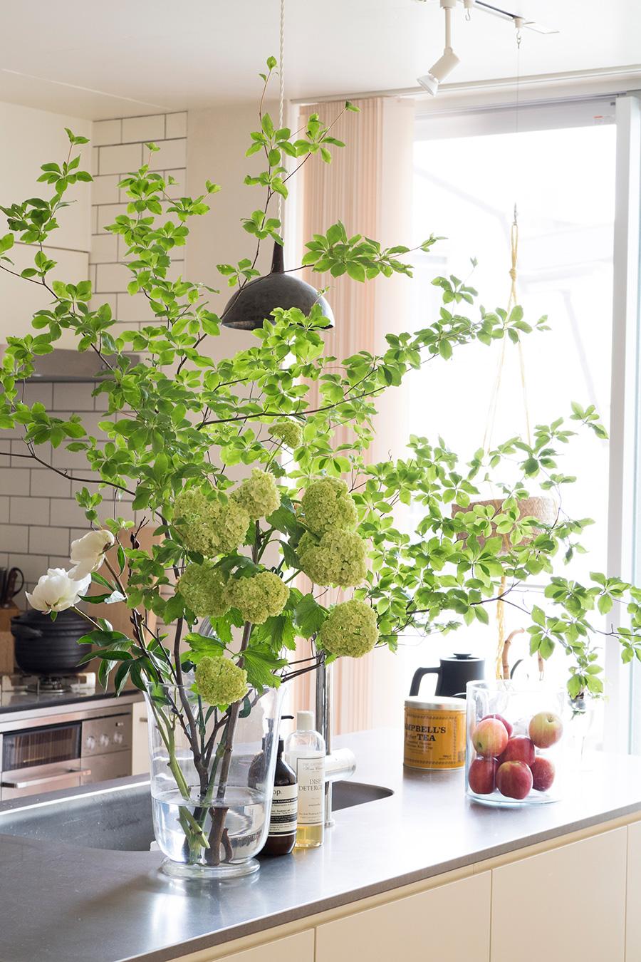 ドウダン、ビバーナム、シャクヤク、カーネーションでアレンジ。枝に縦に切り込みを入れることで長持ちするそう。