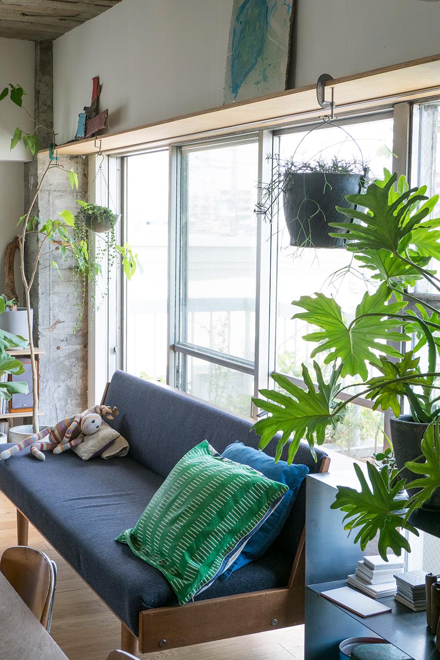 開口に合わせて小さな棚を上部に設置。家中をぐるりと取り囲み、ディスプレイが楽しめる。