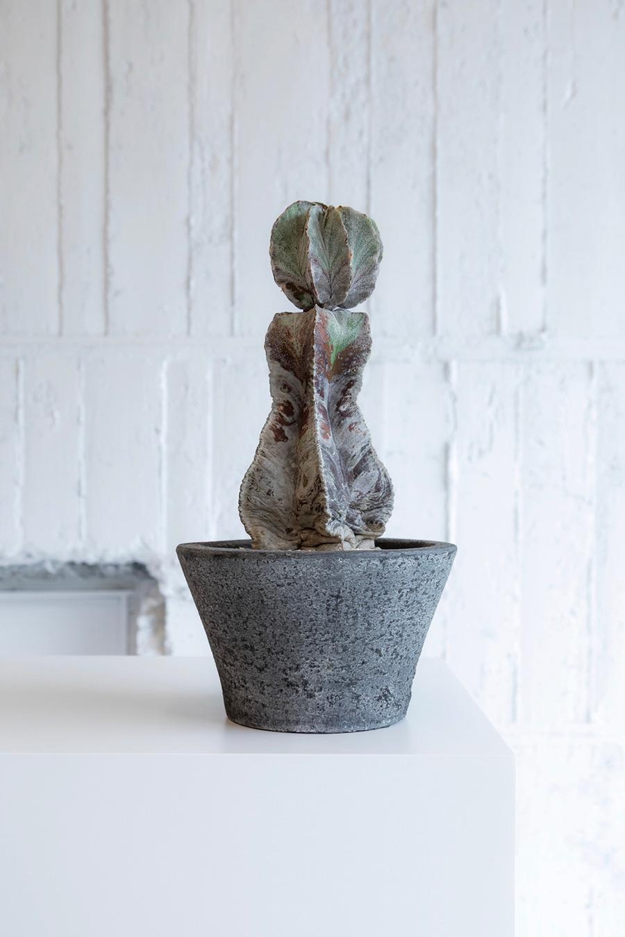 鸞鳳玉 (らんぽうぎょく)  ¥50,000 石積みアートを思わせるユニークなシルエット。よく見ると上部の個体の活着面はほんのわずか。自然が生んだ絶妙なバランスに惹かれる。
