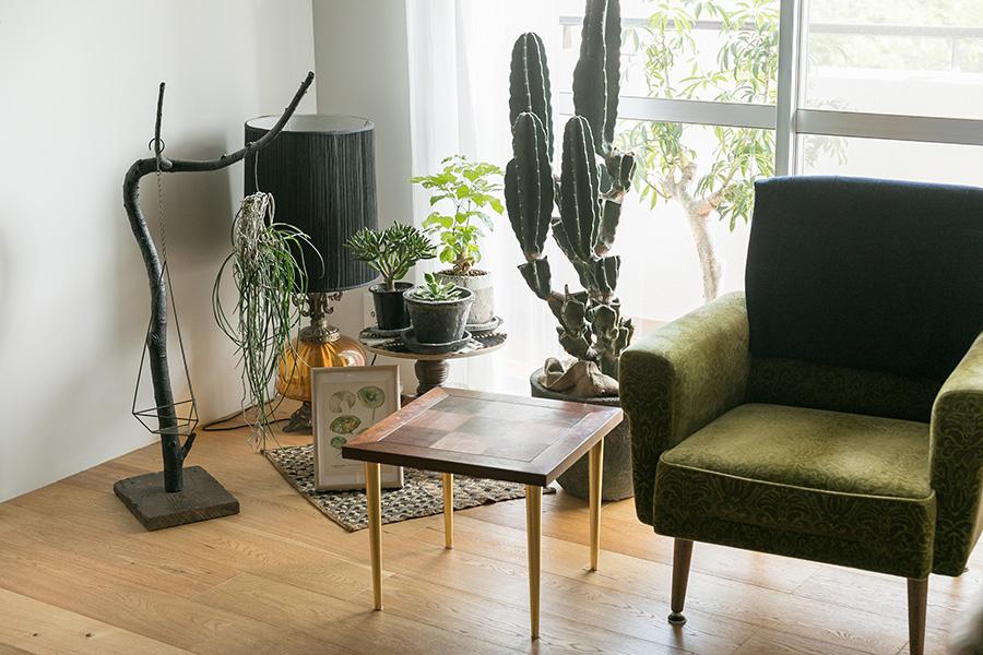 チェア、コーヒーテーブル、ランプはすべてアンティークショップで見つけたもの。左の枝のオブジェは、枯れてしまった観葉植物にアクリル絵の具を塗って自作したものだそう。