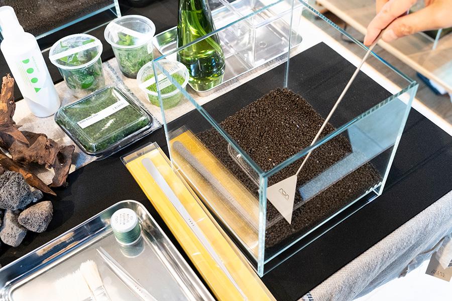 ①活性炭入りで微生物の働きを良くするソイル(土)をケースに入れ、サンドフラッターで平坦になるようにならす。