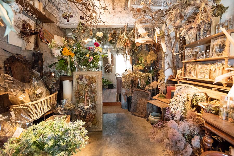 植物で溢れる店内では、ドライフラワーのワークショップなども開催している。