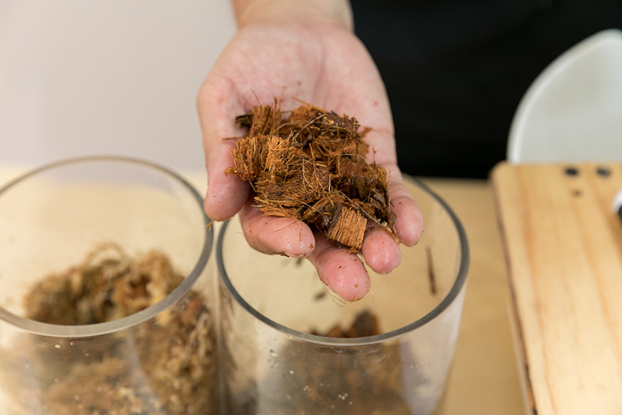 ベラボンは、ヤシの実の繊維を園芸用にアク抜き加工してあるもの。過湿を防ぎ、根腐れ防止になる。軽いのでハンギングには最適。